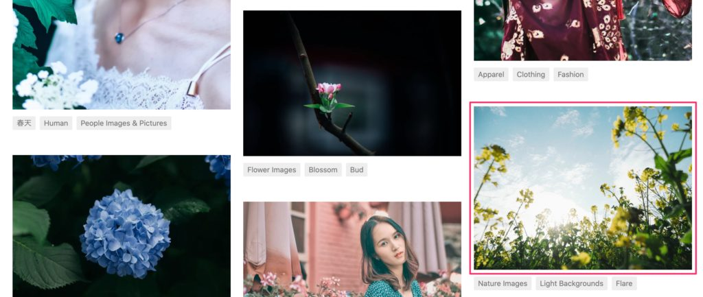 ブログ, 画像, 素材, フリー, 無料, 写真